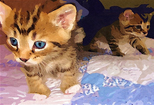 painting of kittens